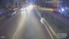 Bursa'da ölen öğrencinin ailesi: Şoför elini kolunu sallayarak geziyor