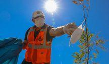 Karayolları'nın 'turuncu adamlar'ı, bilinçsizce atılan maskeleri temizliyor