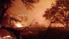 Bodrum'da çıkan yangın söndürüldü