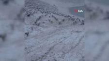 Erzincan'da kar yağışına yakalanan çobanın mutluluğu