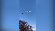 Avustralya'da kuşlar, kargo drone'una saldırdı