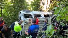 Zonguldak'ta virajı alamayan kamyonet ormana uçtu