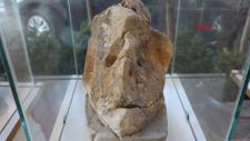 Muğla'da çobanın, insana benzeyen 3'üncü taş sergisi
