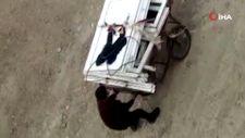 Arnavutköy'de ahıra giren hırsızlar, geriye bir tek yangın söndürme tüpü bıraktı