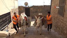 Mardin'de eşekler, restorasyon çalışmalarında da mesaide