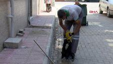 Manisa'da, temizlik işçisi ile sokak köpeğinin samimi dostluğu