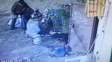 İzmir'de  2 pitbull, saldırdıkları köpeği öldürdü