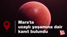 Mars'ta uzaylı yaşamına dair kanıt bulundu