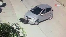 Ankara'da park etmeye çalıştığı aracını kaldırımda yatan köpeğin üzerine sürdü