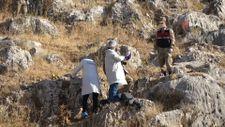 Adıyaman'da ormanlık alanda ceset bulundu