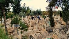 Şanlıurfa'da korkunç olay: Mezarlıkta bebek cesedi bulundu