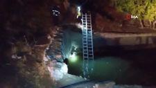 Hakkari'de sulama havuzuna düşen 2 yavru ayı kurtarıldı