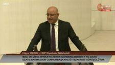 HDP'li Hişyar Özsoy: Türkiye Afrika'da Fransa'nın yerini almaya çalışmasın