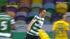 Sporting Lizbon'un son iki sezondaki arka direk organizasyonları