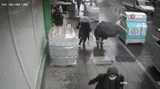Küçükçekmece'de 70 bin lirasını düşürdü: Polis buldu