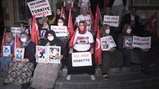 Diyarbakır'da annelerin oturma eylemine bir aile daha katıldı