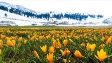 Karların erimesiyle doğal güzellikler ortaya çıktı