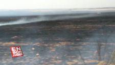 Anız ateşi buğday tarlasını yaktı