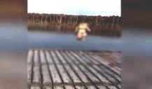 Göle mükemmel bir atlayış yapan kadın