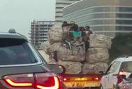 Aşırı yüklü kamyonun tepesinde tehlikeli yolculuk