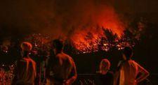İzmirliler yanan ormanları çaresizce izledi