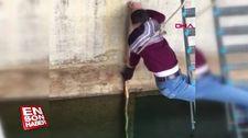 Yavru kediyi suya düşmekten kurtardı