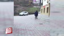 Artvin'de sokak köpeğini kovalayan adam af diledi