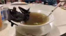 Çinlilerin yediği korkunç yemekler