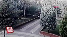 Küçükçekmece'de pitbull cinsi köpek parkta oynayan çocuğa saldırdı