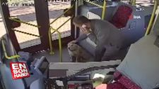 Üşüyen köpek toplu ulaşım otobüsüne sığındı