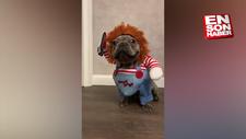 Chucky kostümlü sevimli bebek