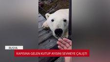 Kapısına gelen kutup ayısını sevmeye çalıştı
