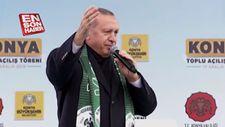 Erdoğan'dan Portakal'a: Mandalina mıdır, narenciye midir