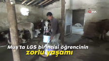 Muş'ta LGS birincisi öğrencinin zorlu yaşamı