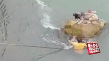 Kayada mahsur kalan köpeği vatandaşlar kurtardı