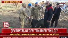 Deprem bölgesinde yaralanan hayvanlara müdahale