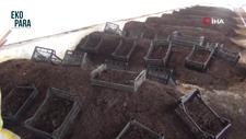 Afyonlu üreticiler solucan gübresi ihracatına hazırlanıyor