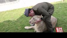 Yavru aslan doğal ortamında değil, evde besleniyor