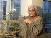 Yaralı kargayı evinde besleyen kadına bin 294 lira ceza